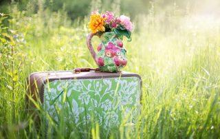 summer-still-life-785231__340